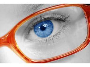 Etude Lunettes de vue